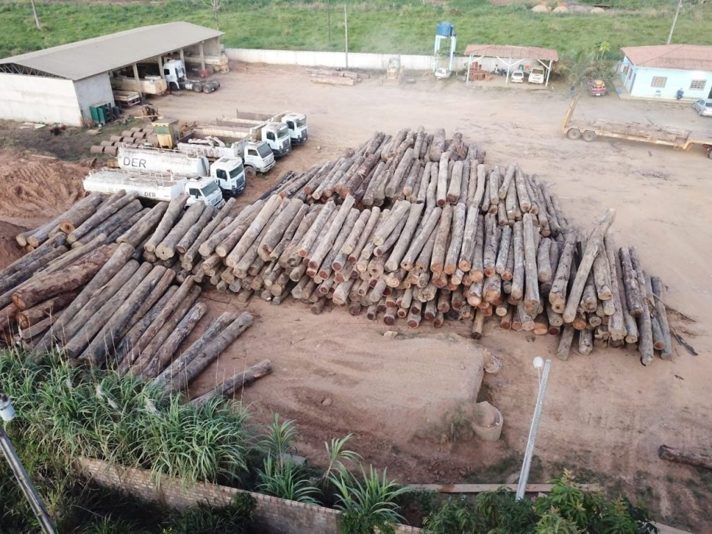 Large quantities of logs seized in sawmill inspections near Ariquemes